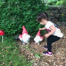 Cutest little gnome garden